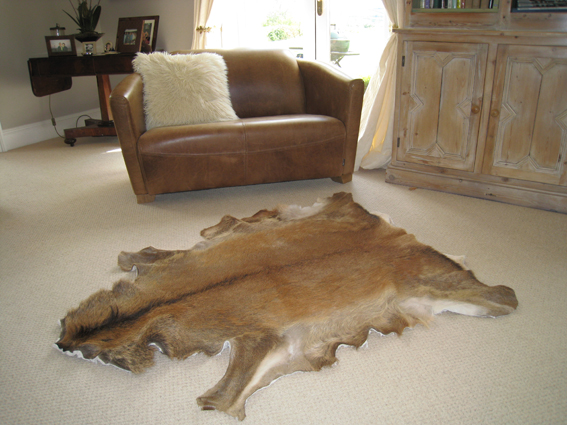 Deer Skin Rugs Uk